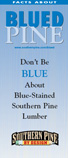 special-topics_blue-stain_pamphlet