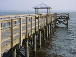 pressure treated dock marine construction