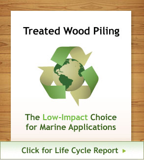 marine construction treated wood life cycle report